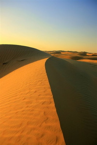 Sand dune in the desert between Abu Dhabi and Al Ain