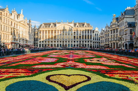 Brussels Flower Carpet, August 2014